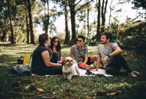 group of friends having a picnic with a dog